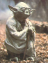 Yoda McFly